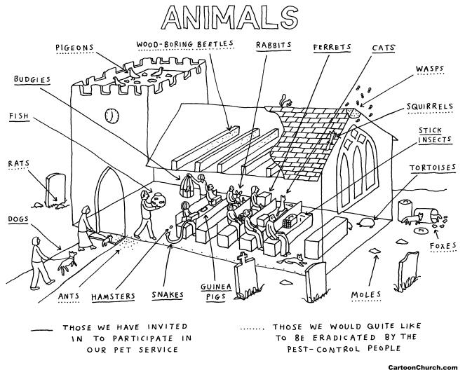 Day 11 - animals