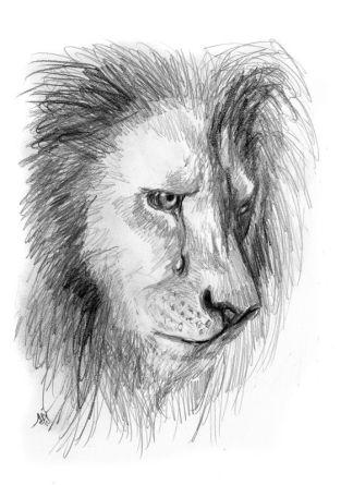 aslan crying