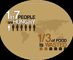 hunger-stats_orig