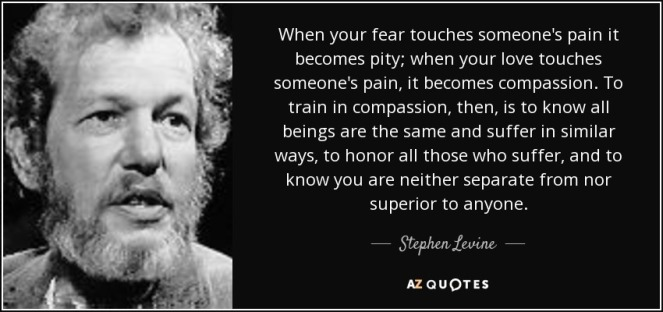 Stephen Levine when your fear touches someone's pain